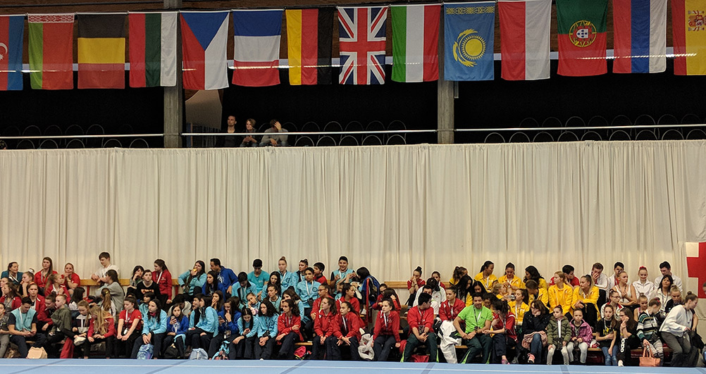 FIAC spectators